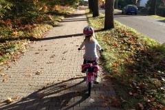 helenes-ferienwohnung-lausitzer-seenland-radweg-fahrradtour