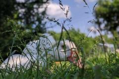 lausitzer-seenland-ferienwohnung-senftenberger-see-gross-koschen-helenes-ferienwohnung-warzenente